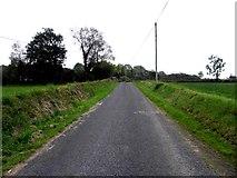 H1418 : Road at Cartronnagilta by Kenneth  Allen