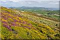 SH1425 : Mynydd Mawr by Ian Capper