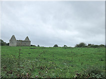 R3951 : Ruined church at Killeen by Neville Goodman