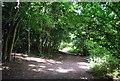 TQ4569 : LOOP, Scadbury Reserve by N Chadwick