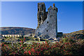 W1149 : Castles of Munster: Castledonovan, Cork - revisited (2) by Mike Searle