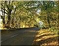 SU8287 : Minor road towards Frieth by Stefan Czapski
