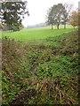 ST5769 : Manor Woods Valley by Derek Harper