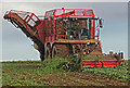 TA0115 : Beet Harvesting near Bonby Top Farm by David Wright
