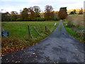 SU8214 : Access road to Upton Farm by Shazz