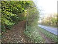 SX3456 : Footpath from the A374 by Derek Harper