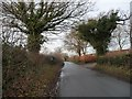 SJ8260 : Child's Lane, looking west by Christine Johnstone