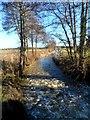 TL1038 : River Flit looking west by Bikeboy