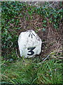 SW3727 : OS rivet & benchmark - milestone at Trevedra by Richard Law