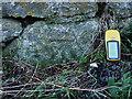 SW3827 : OS benchmark - farm at Newshop by Richard Law