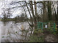 SJ4162 : The River Dee at Eccleston by Jeff Buck