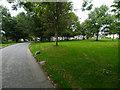 SX0973 : Blisland village green by Chris Gunns