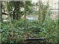 SK5446 : Leen Valley Walk, Bestwood, Notts. by David Hallam-Jones