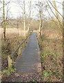 SK5446 : Moorbridge Pond Nature Reserve, Bestwood, Notts. by David Hallam-Jones