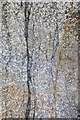 SW6536 : Holman's Test Mine - Geology by Ashley Dace