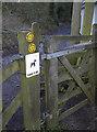 ST5655 : No dirty doggies by Neil Owen
