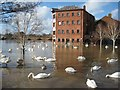 SO8454 : Flooding in Worcester : Week 6