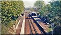 TQ0452 : Clandon station, 1984 by Ben Brooksbank