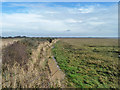 SZ8696 : Old sea wall, Pagham Harbour by Robin Webster