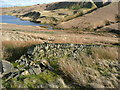 SE0315 : Drystone wall, Head Green, Scammonden : Week 8