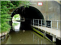 SO8963 : Bridges across the canal in Droitwich, Worcestershire by Roger  Kidd