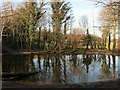 TQ3309 : Lot's Pond, Stanmer Park by Simon Carey