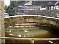 ST6867 : Mill leat by Neil Owen