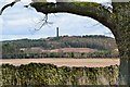 NT6326 : Waterloo Monument from St Cuthbert's Way by Jim Barton