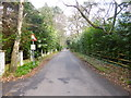 SZ0691 : Branksome Park, Dover Road by Mike Faherty