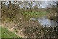 SP9854 : River Great Ouse between Stevington - Pavenham by David Kemp