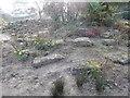 TM1645 : Rock garden in Christchurch Park by Hamish Griffin