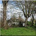 TL1175 : Leighton Bromswold: Sheep Street by John Sutton