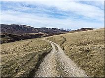 NN9978 : Track east of the Allt a' Ghlinne Mhòir by William Starkey