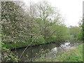 SE4204 : The River Dearne. by steven ruffles