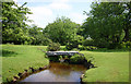 SX1882 : Clapper Bridge, Penpont Water, Bowithick by Jo Turner