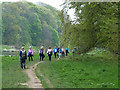 NT5334 : Ramblers by the River Tweed by Oliver Dixon