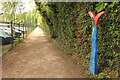 Dist:0.6km<br/>A John Mills 'Fossil Tree' milepost by Running Furrows Gate cycle route