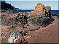 NH7459 : Multi-coloured rocks near Scart Craig : Week 19