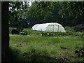 TF4109 : Farmland and polytunnel by JThomas