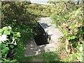 TM5495 : Pillbox on Gunton Cliffs by Adrian S Pye