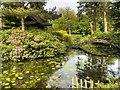 SJ7481 : Almond Eye Bridge and Shinto Shrine in the Japanese Garden by David Dixon