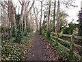 TL4556 : Footpath behind Newton Road by Kim Fyson