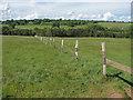 SU9047 : Fence line by Alan Hunt