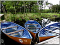 H5775 : Boats moored at Loughmacrory : Week 21