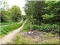 SJ9594 : Trans Pennine Way by Gerald England