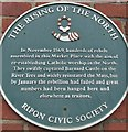 Photo of The Rising of the North green plaque