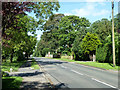SP8719 : Leighton Road, Wingrave by Robin Webster
