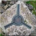 J3145 : Spider, Slieve Croob Triangulation Pillar by Rossographer