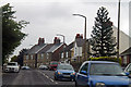 SE3500 : B8096 Hoyland Road and Monkey Puzzle tree by J.Hannan-Briggs