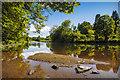 NY1672 : River Annan : Week 25